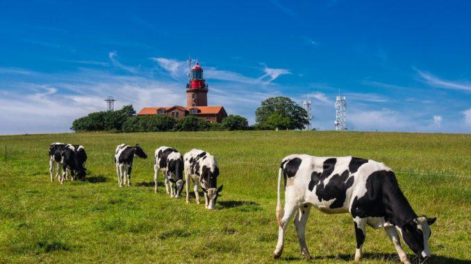 Camping Ostsee Leuchtturm
