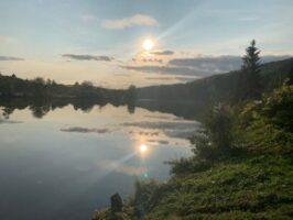 Aussicht auf den Neckar